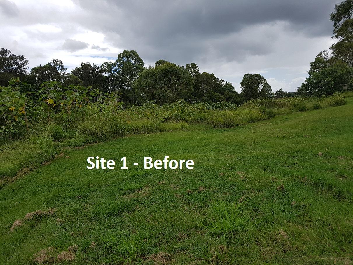 Riverside Restoration and Stabilisation Underway